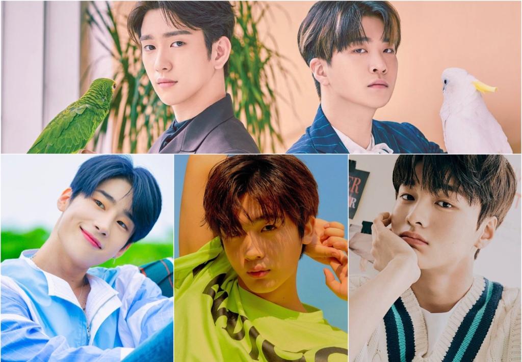 Defender (ISFJ), GOT7's Park Jinyoung and Choi Youngjae, Han Seungwoo, WEi's Kim Yo Han, Cha Jun Ho.